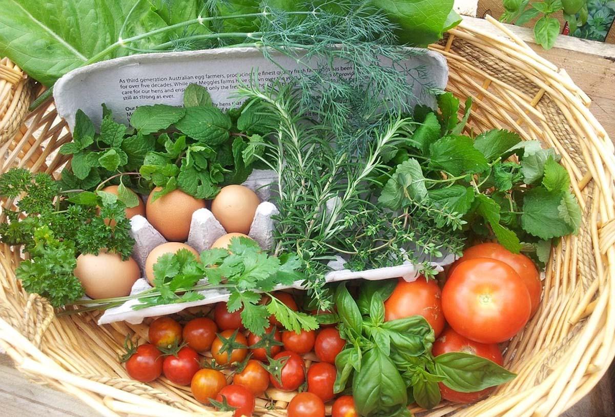 Comment préparer les légumes ?